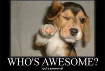 Encouragement pictures