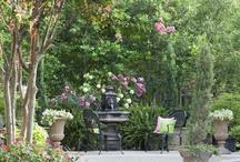 Garden / by Nicole Mahoney