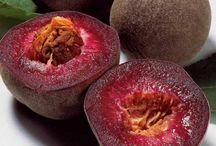 Produce You've Probably Never Heard Of / Exotic Fruits