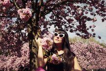 floral folly / by Rachel Balik