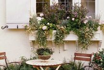 Private Paradise / Ideas for landscaping and decorating your private backyard domain / by Joslyn Kunold
