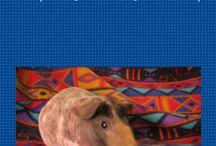 Piggy treats