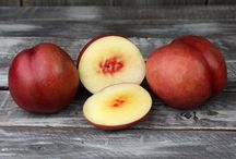 Stone Fruit Favorites!
