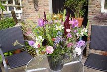 Floxen & Fresia's / Field bouquets, walking and picking flowers