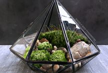 House Inspiration - Outdoors Indoors