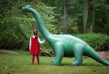 dinosaurs / by Racheli Zusiman