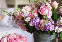 Roses and Roses and more roses / Just different ideas on how to compliment a rose better