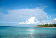 Caribbean Blue by MmR