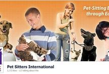 Pet-Care Business Tips / Tips for pet-care businesses, including professional pet sitters and dog walkers.
