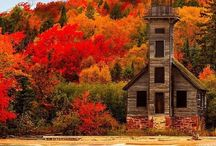 Autumn & buildings