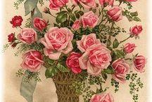 happy birthday / Victorian Card