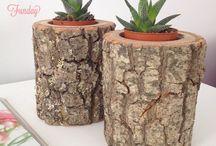 Kütük ürünler Wood products / Succulent pot wood pot kütük saksı ahşap saksı