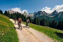 Bici e Natura Virgi&Bici