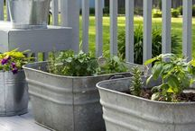 BEST Container Garden Ideas