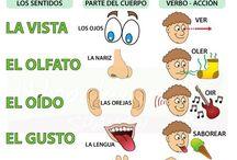 Spanyol tanítás