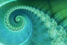 Spirals / Nature