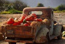 Život na vidieku