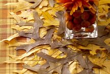 Thanksgiving / by Dawn Crow-Matthews