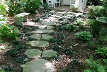 Backyard space / by Colleen McElroy
