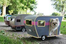 hunde camping