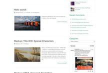 WordPress Theme / by Victor Martinez