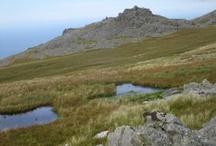 Snowdonia Walks