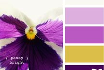 colors / by Sharon Kaye Defore Lowe
