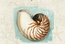printables sea shell