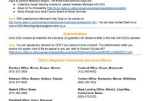 NJ's Adult Service System (21+) Factsheets