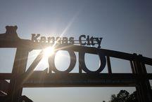 KC Zoo 2013