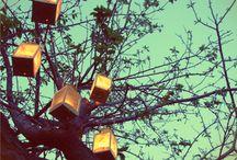 Lights, gardens