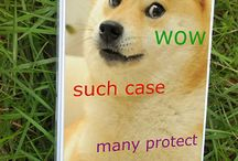 Cases That RULE