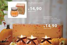 Speziale Sale Flyer September 2015 für Gäste / Bestellbar unter https://corinna-elze.partylite.de