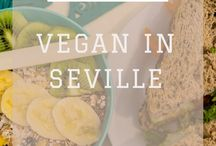 Vegan Travel / Vegan food around the world, vegan travel tips, restaurant recommendations and more.