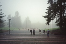 Rainy Days / by The Evergreen State College