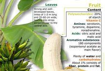 health - fruit & vegetables