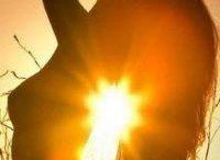 Projekt słońce