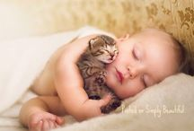 Love & Friendship