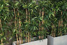 Plantenbakken vr balkon