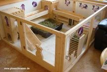 Rabbit ideas / All about bulinding your own rabbit hutches and enclosures