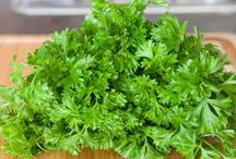 Herb recipes / by Seacoast Eat Local