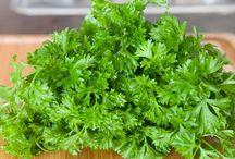 Herb recipes