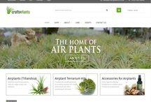 Craftyplants new look website / Our new look website www.craftyplants.co.uk