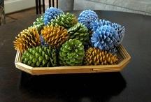 Pinecones / by Kristin Metts