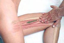 Wszystko o masażu / rodzaje, nowe techniki, kursy, SPA