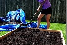 Gardening / by Jessica Marielli