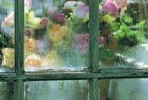 Window's