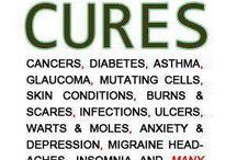 Health Oils / Info regarding healthy oils