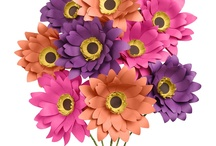 FLORAL DIY AND OTHER EMBELLISHMENTS / by Erin Stevens