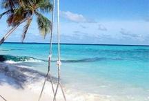 I Dream of Paradise